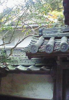 自然と山寺と忍者修行