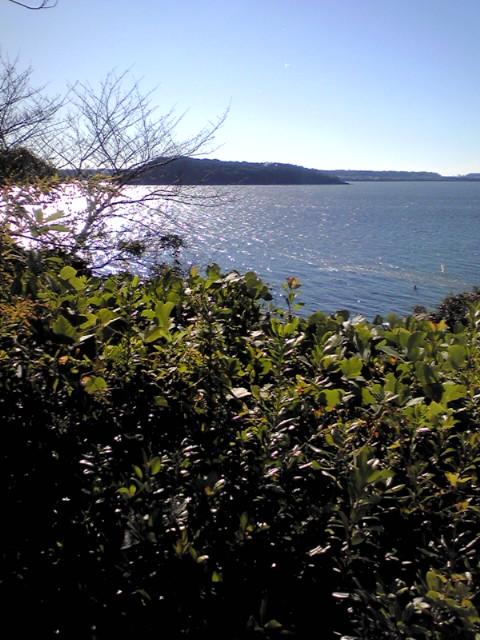 浜名湖も通り過ぎて